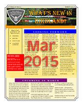 MAR 2015Thumb
